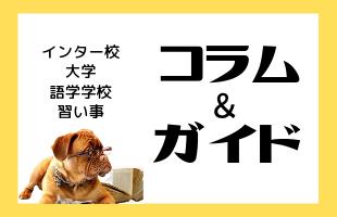 コラム/ガイド